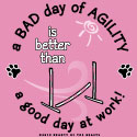 A Bad Day of Agility is Better Than a Good Day at Work! (new version)